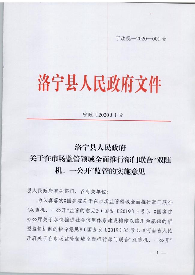 宁政【2020】1号_00001